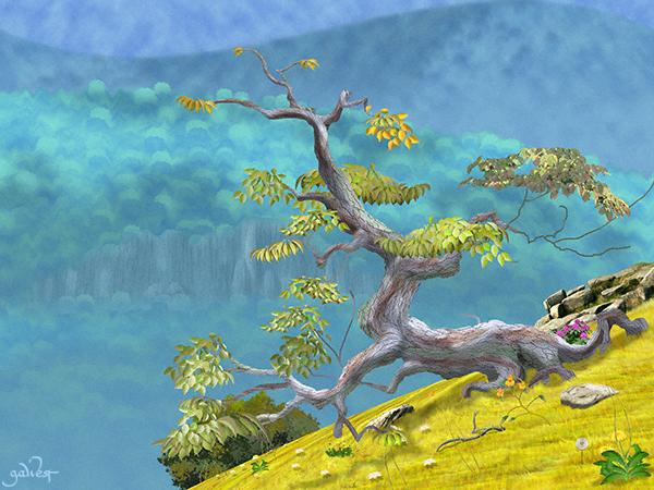 Ancient Dogwood Image