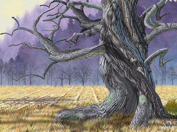 Purple Hills Image